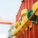 Kiedy decyzja zakazująca dalszych robót budowlanych jest obligatoryjna?